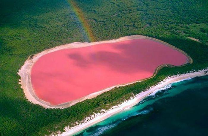 Озеро розового цвета - чудо Австралии