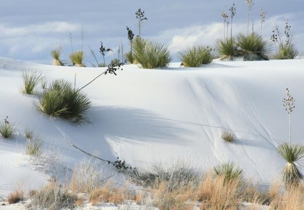 Самая необычная пустыня в мире - Пустыня Белых Песков