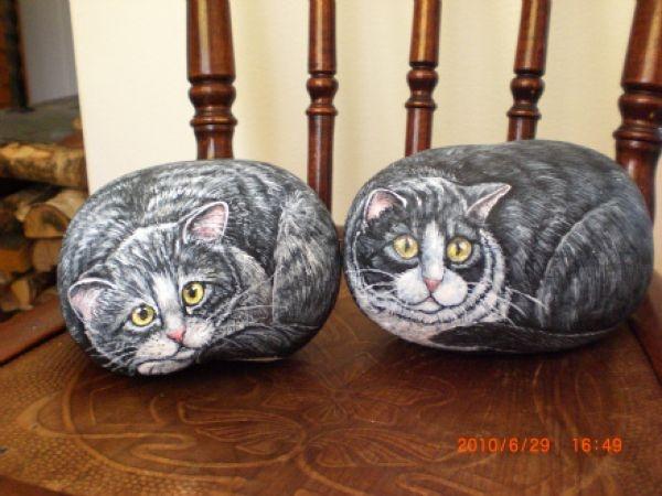 Потрясающие картины котов на камнях