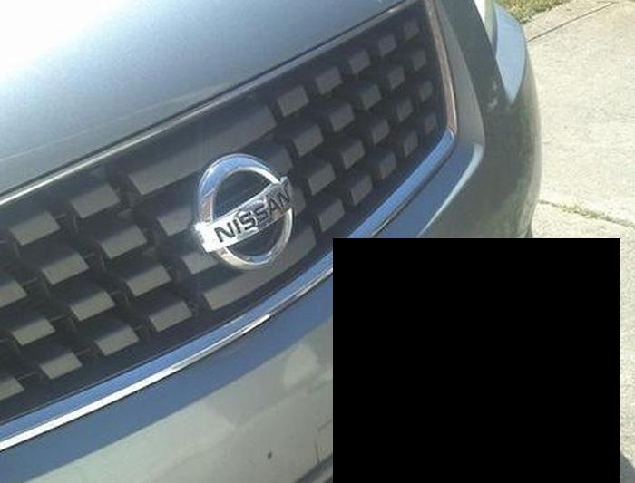 В переднем бампере автомобиля застряла необычная вещица (6 фото)