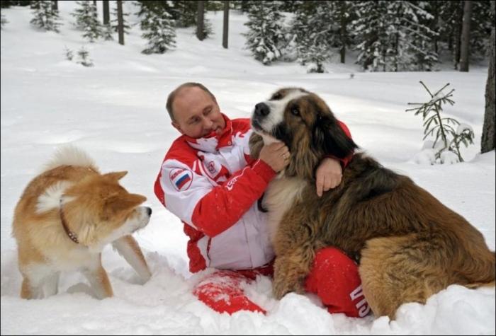 Путин со своими собаками Баффи и Юмэ