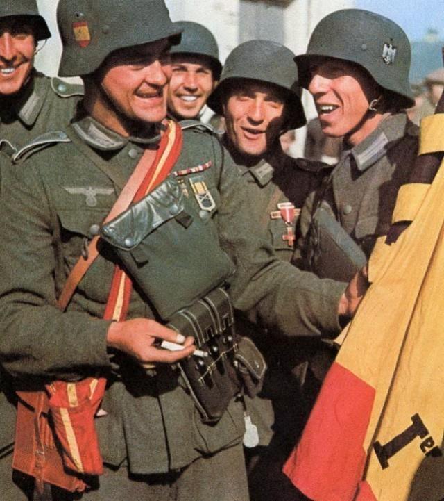 Кто воевал на стороне Гитлера