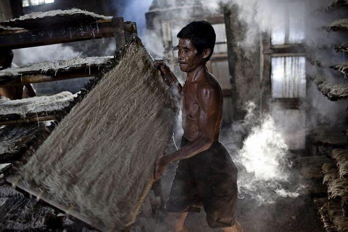 Жуткая фабрика по производству спагетти в Индонезии
