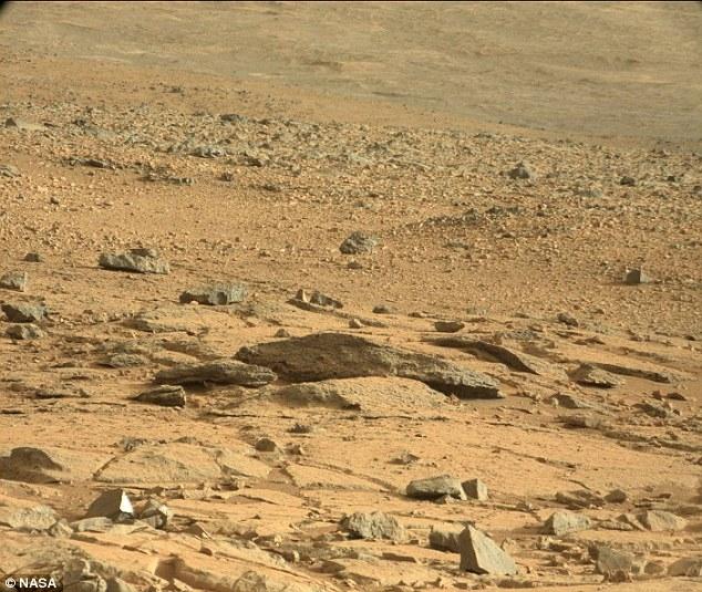Угадайте, кого заметил блоггер на поверхности Марса