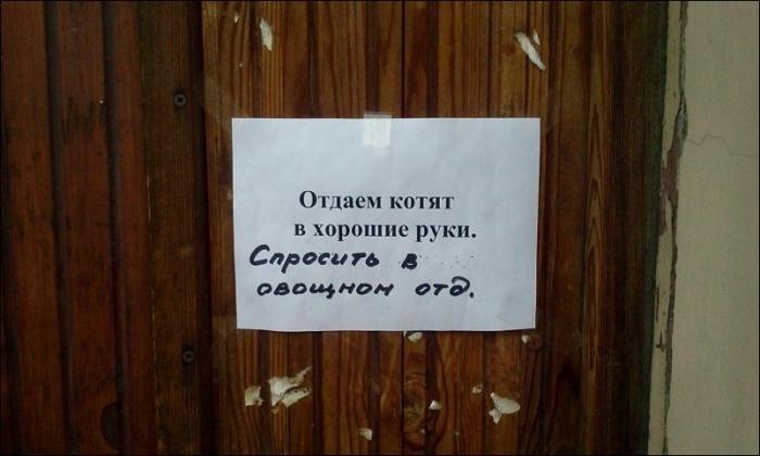 Подборка забавных надписей и объявлений Санкт-Петербурга