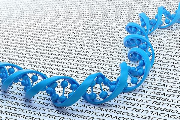 Почему стоит всерьёз опасаться кражи генетической информации