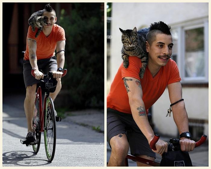 Велосипедист и его кошка