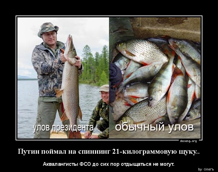 """Путин рассказал, как смог поймать гигантскую щуку: """"Никто не верит, но это правда"""" - Цензор.НЕТ 2812"""