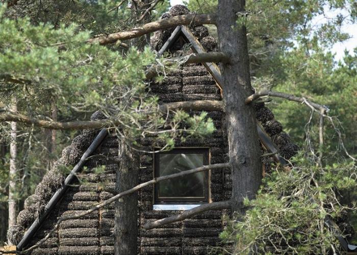 Дом из Водорослей