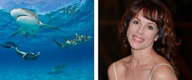 Бесстрашные пловцы в компании акул