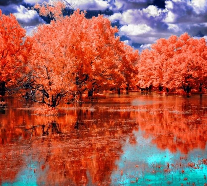 Фантастические инфракрасные фотографии Helios-spada