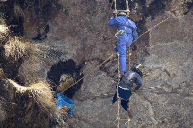Опасная работа в Непале