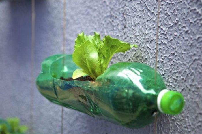 Правильный способ утилизации пластиковых бутылок