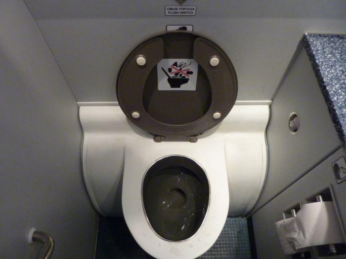 Необычная находка в туалете самолета