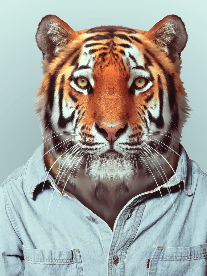 Если бы животные носили одежду