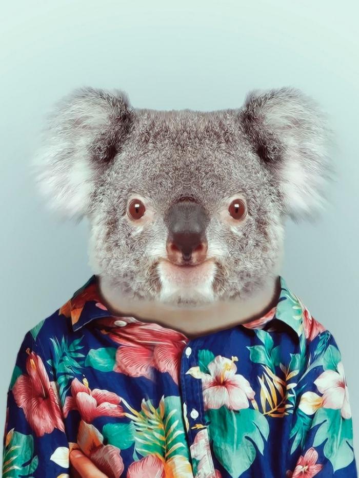 Картинки животных в одежде людей, веселые