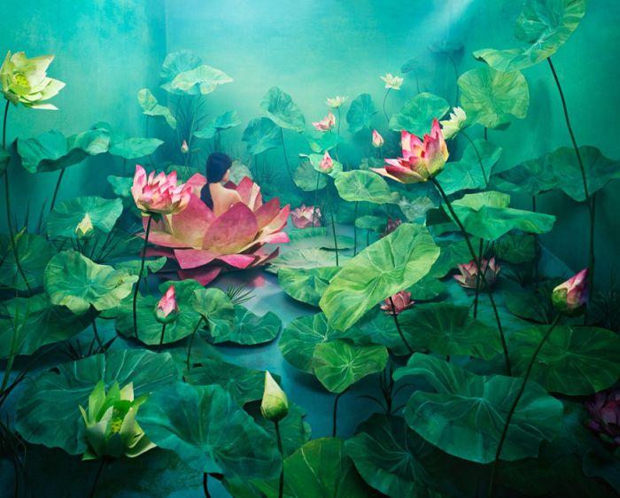 Креатив от Джи Янг Ли