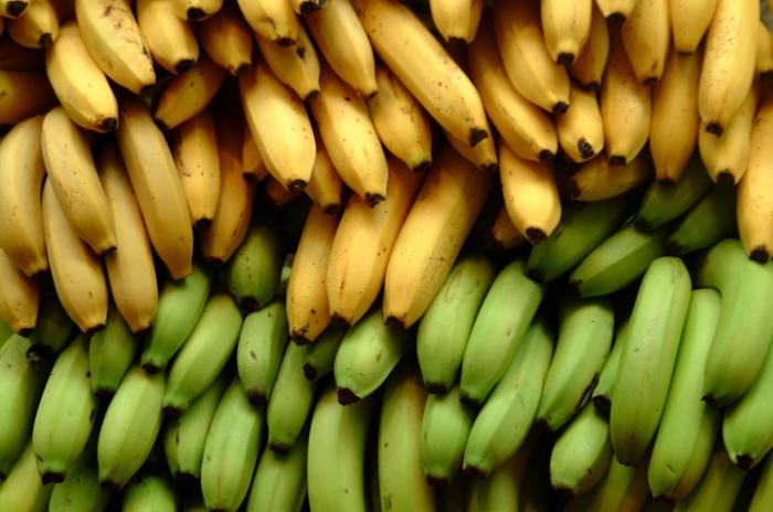 О «свежих» продуктах