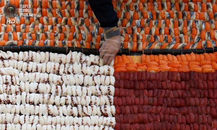 Самая большая в мире мозаика из суши