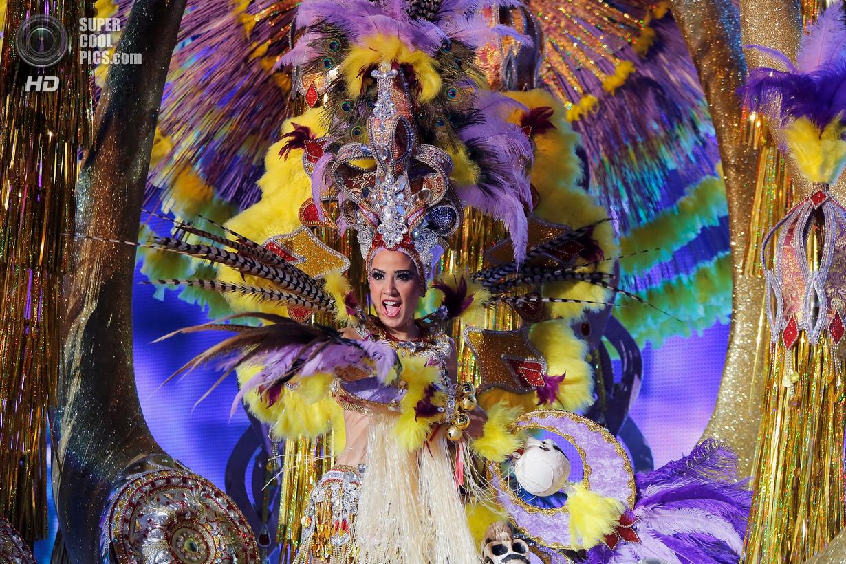 Тёлки с бразильского карнавала 13 фотография