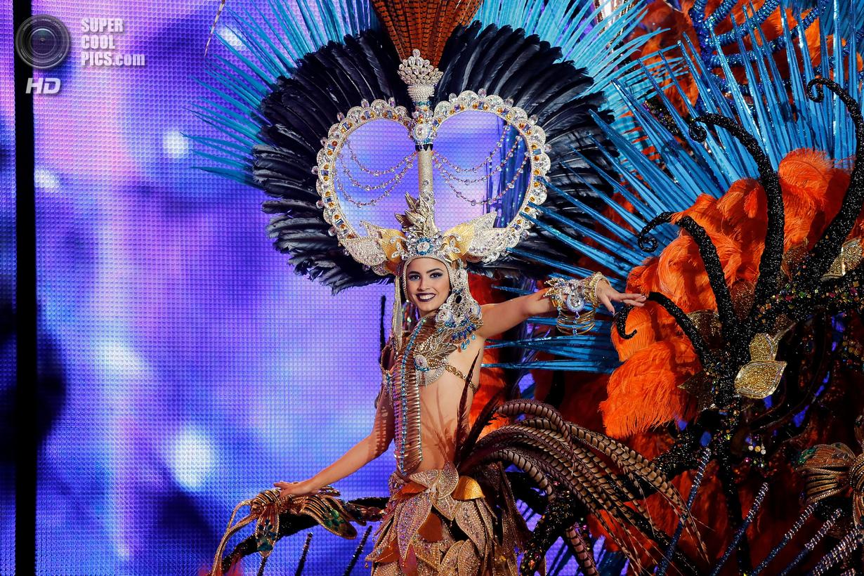 Тёлки с бразильского карнавала 10 фотография