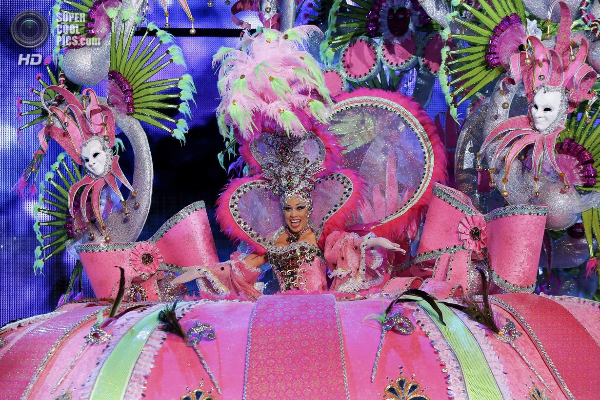 Тёлки с бразильского карнавала 29 фотография