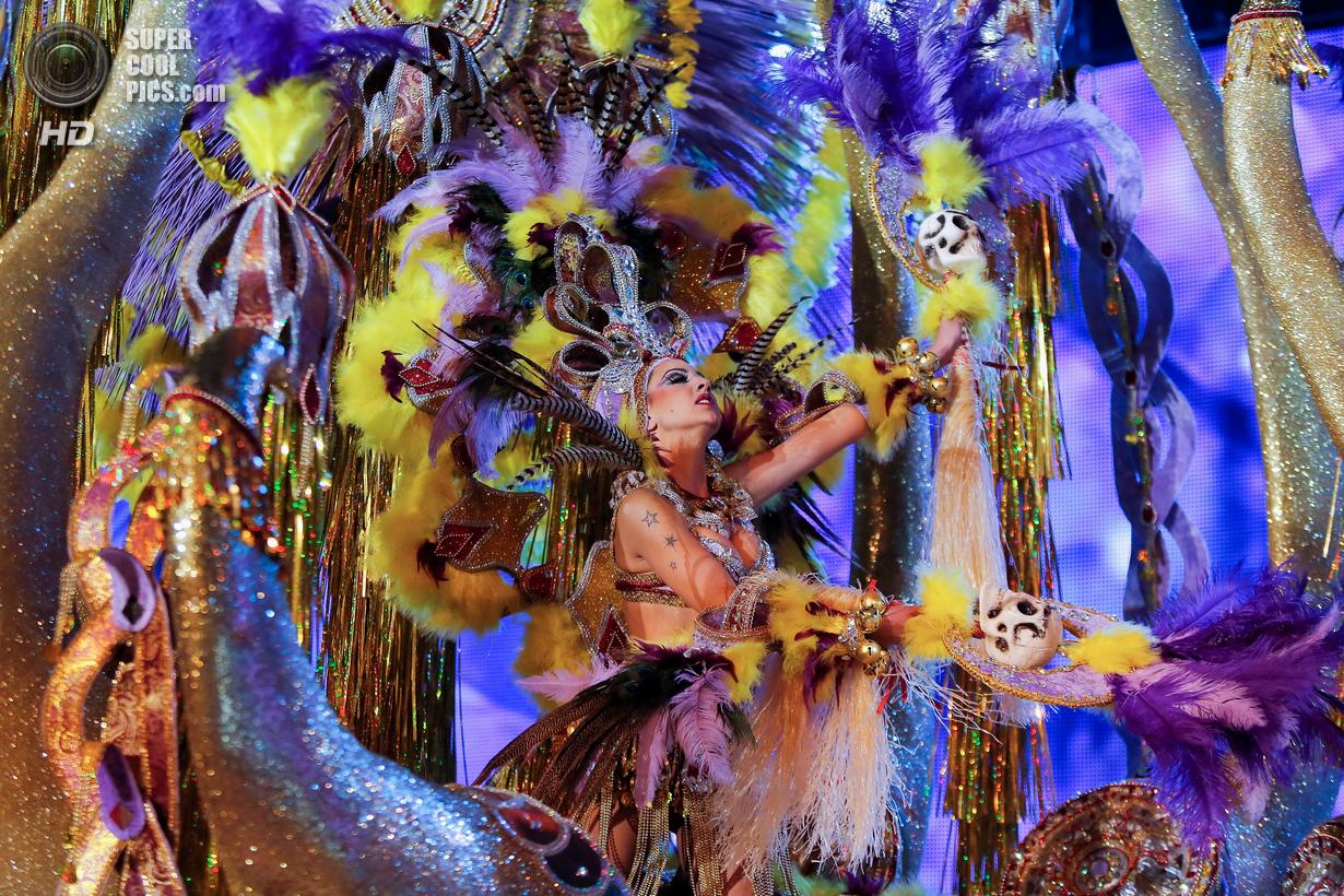 Тёлки с бразильского карнавала 19 фотография