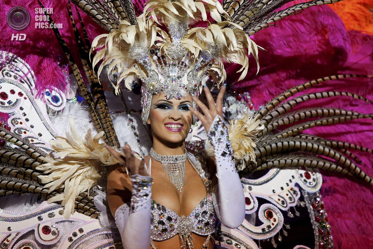 Тёлки с бразильского карнавала 3 фотография