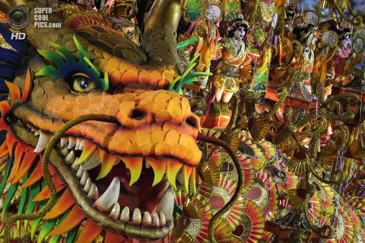 Тёлки с бразильского карнавала 26 фотография