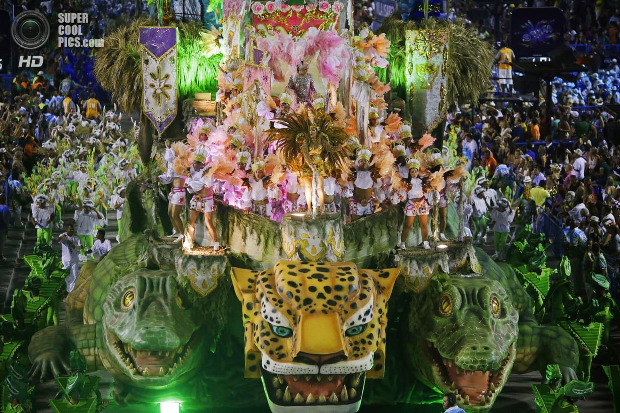 Тёлки с бразильского карнавала 30 фотография
