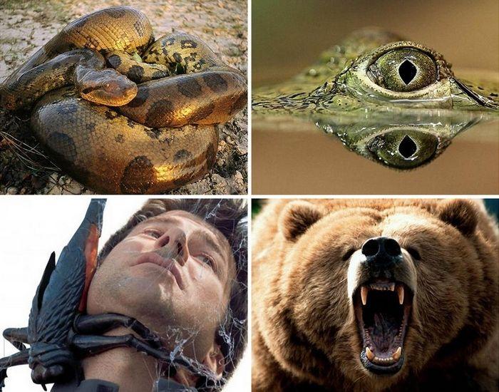 Опасные существа