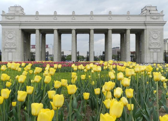 Парк им. М. Горького в Москве