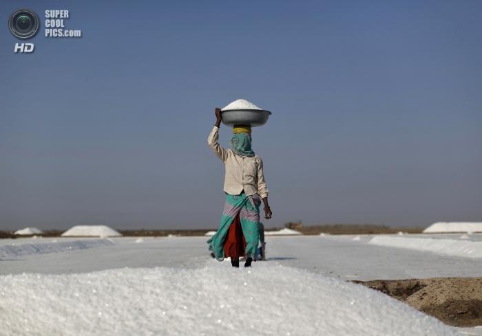 Соляные поля Индии