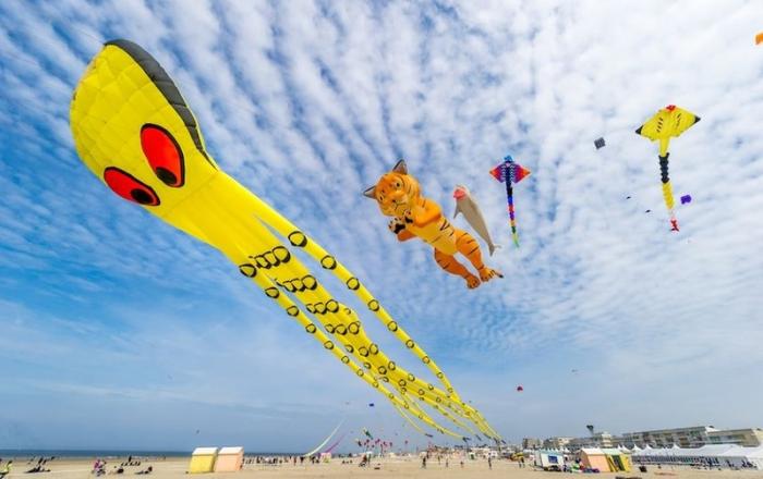 Фестиваль воздушных змеев во Франции