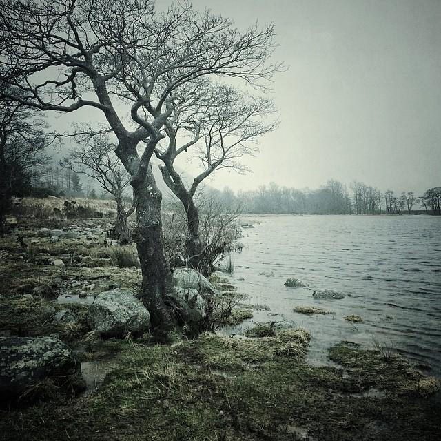 Красивые фото снятые на IPhone