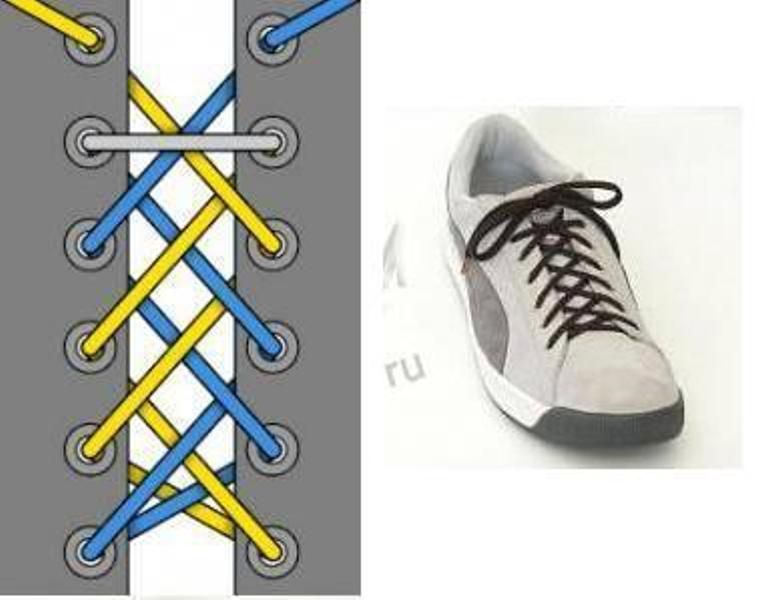 красиво завязать шнурки в картинках считают