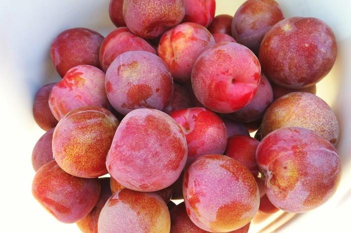 Самые необычные фрукты и овощи - 2