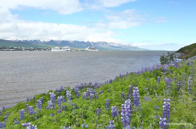 Удивительная Исландия - 3