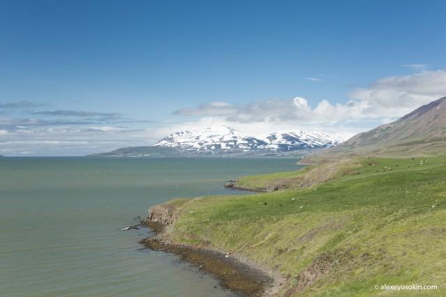 Удивительная Исландия - 1