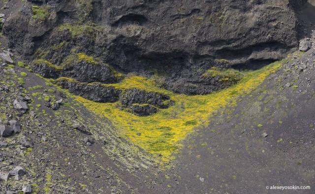Удивительная Исландия - 11