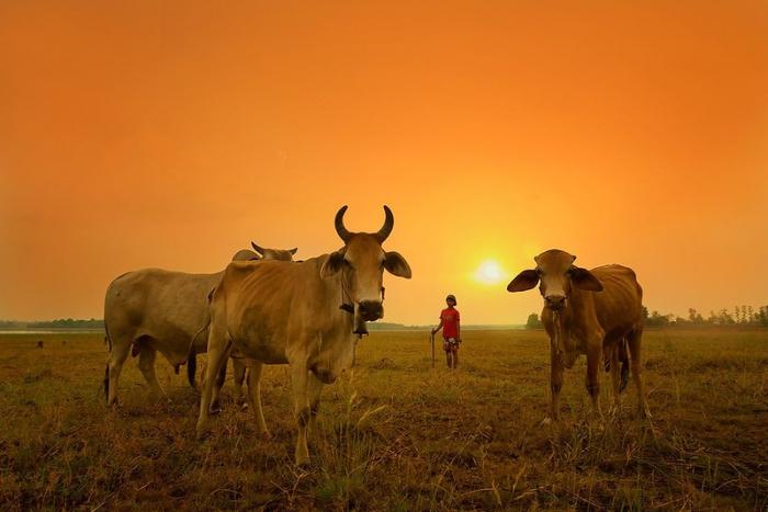 Красивые фотографии Таиланда - 9