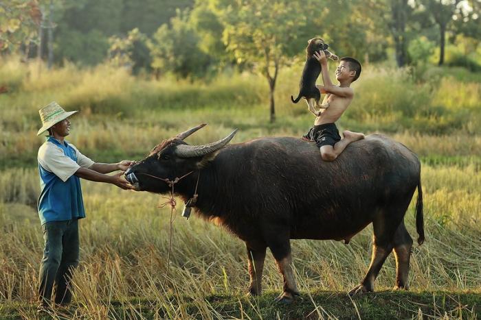 Красивые фотографии Таиланда - 3