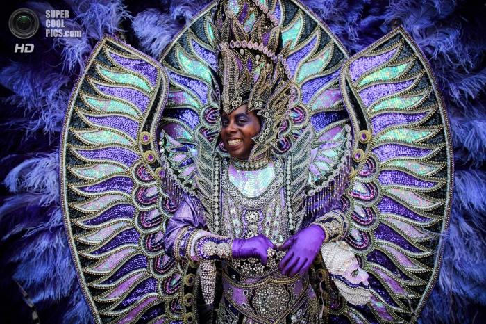 Карнавал культур 2014
