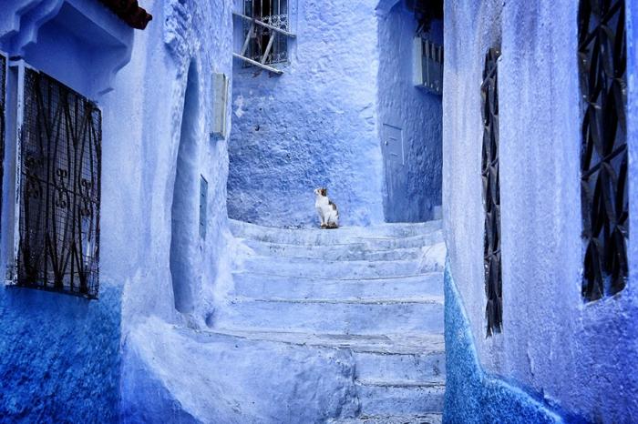 Прогулка по синему городу - 3