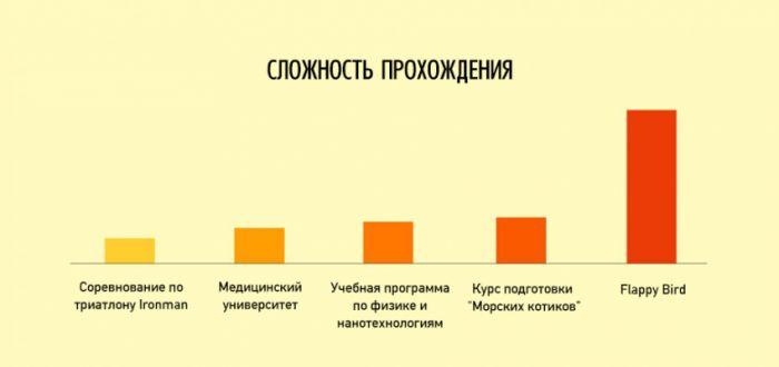 инфографики о нашей жизни - 12