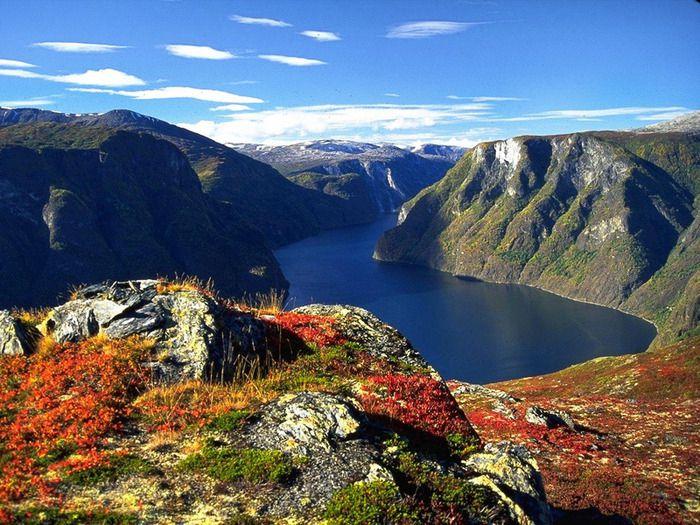 О ценовой политики в Норвегии