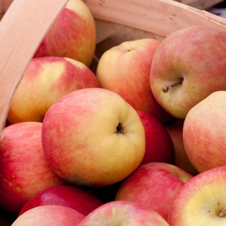Картинки сказка золотое яблоко форма