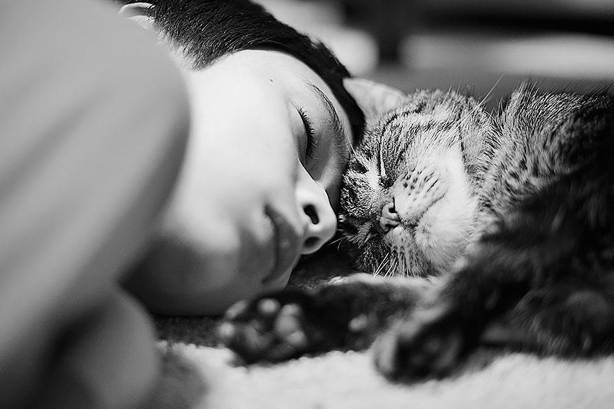 прекрасная, изысканная, черно белое фото кошек и людей фуд фото съемка