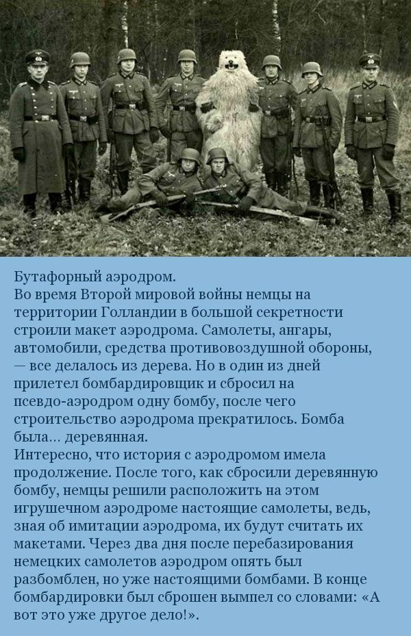Военные курьёзы