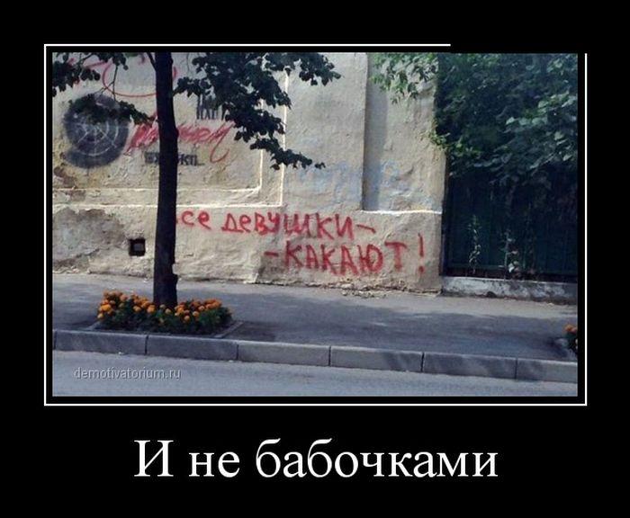 Фото приколы досенг: